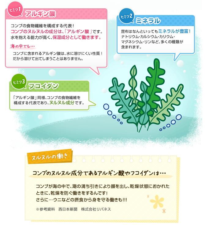 コンブの食物繊維のアルギン酸の保湿成分